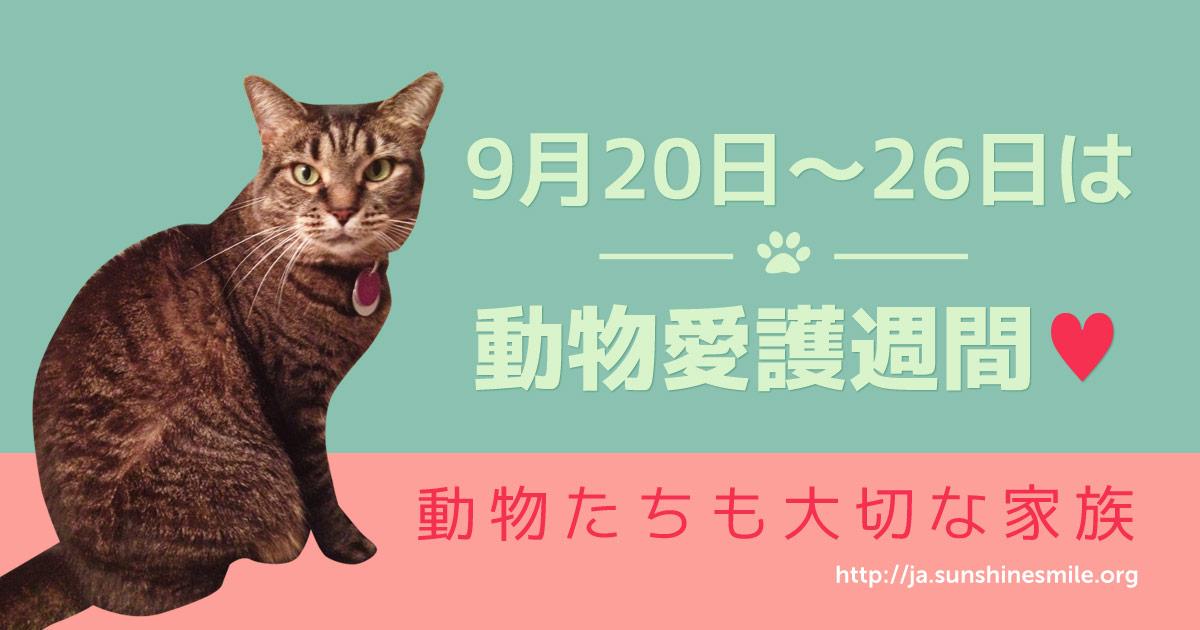9月20-26日は動物愛護週間
