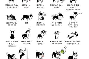 犬のボディーランゲージ(イラストバージョン)