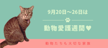 9月20日〜26日は動物愛護週間