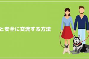 犬と安全に交流する方法