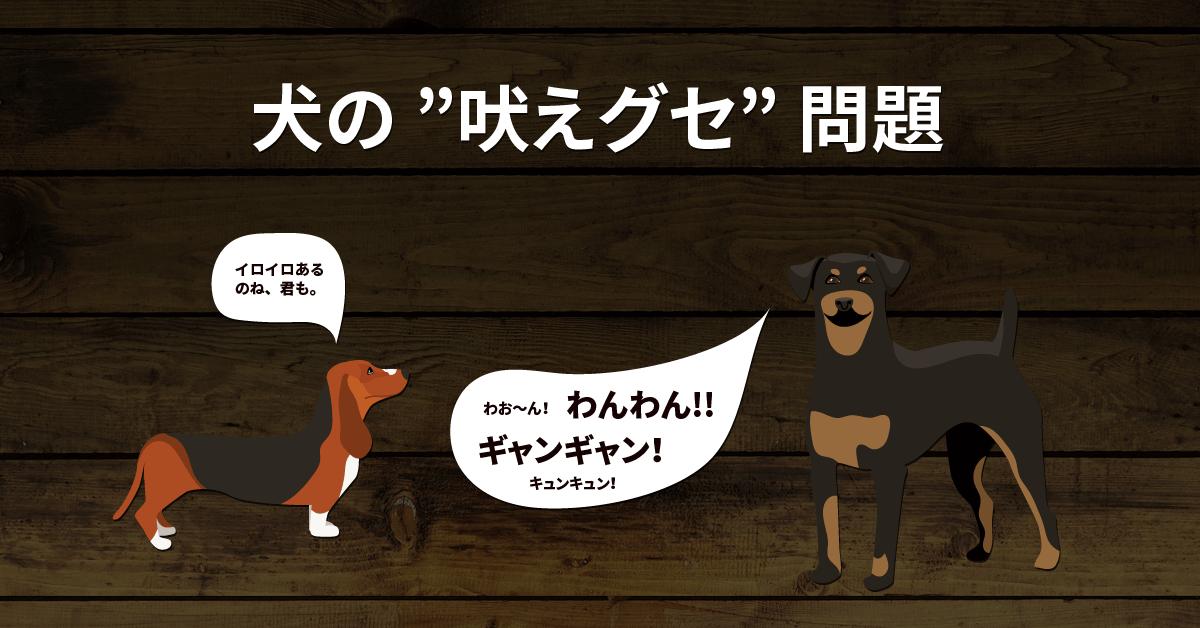 犬の吠えグセ問題