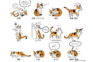 猫のボディーランゲージ、イラスト:リリー・チン