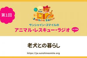 第1回:老犬(シニア犬)との暮らし(アニマルレスキュー・ラジオ!)