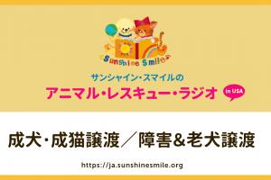 成犬・成猫譲渡/障害&老犬譲渡(アニマルレスキュー・ラジオ)