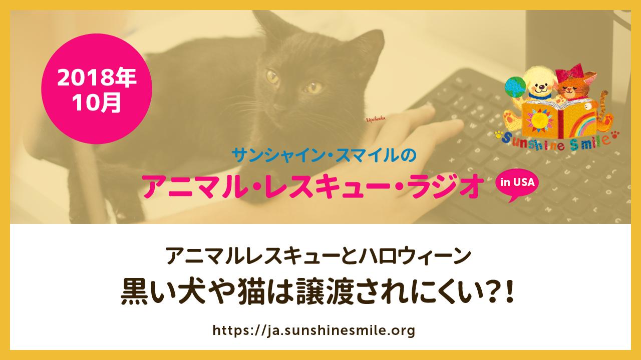 アニマルレスキューとハロウィーン 黒い犬や猫は譲渡されにくい?!(アニマルレスキュー・ラジオ!)